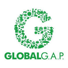 Standard GLOBAL G.A.P. - IMQ Poland